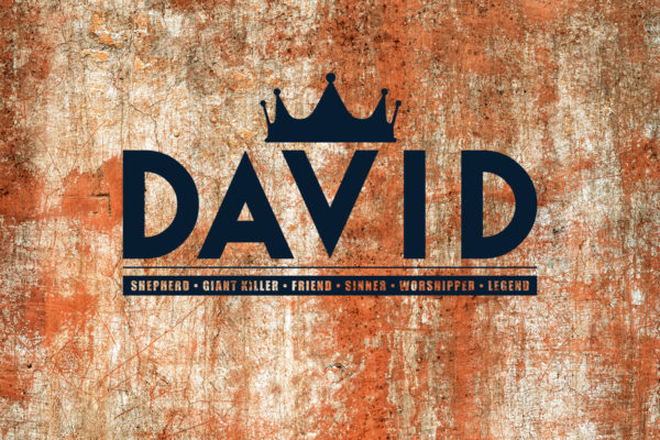 king david bible series